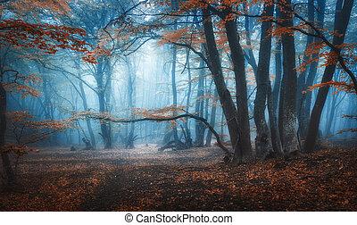 místico, oscuridad, bosque de otoño, con, rastro, en, azul, niebla