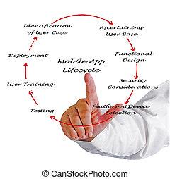 móvil, app, lifecycle