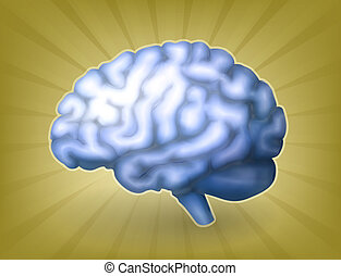 mózg, eps10, błękitny, ludzki