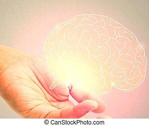 mózg, ilustracja, człowiek, dzierżawa