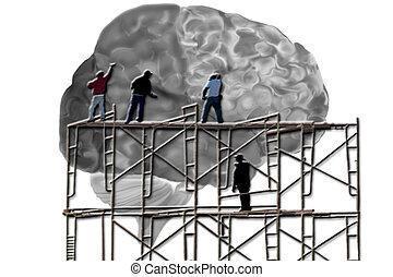 mózg, mężczyźni, rusztowanie, pracujący