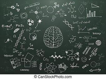 mózg, nauka