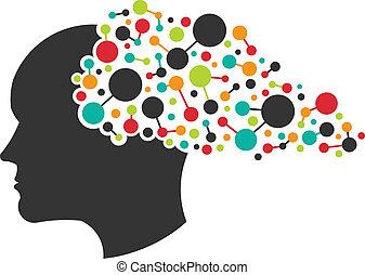 mózg, pojęcie, tworzenie sieci