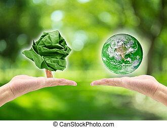 möblera, avbild, suddig, form, papper, miljö, bokeh, holdingen, :, concept:, elementara, natur, hand, bakgrund, värld, dag, detta, träd, planet, nasa, grön, manlig