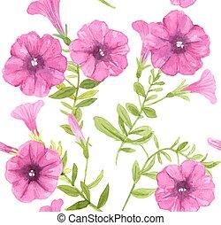 mönster, blomningen, petunia