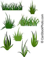 mönster, gräs, grön