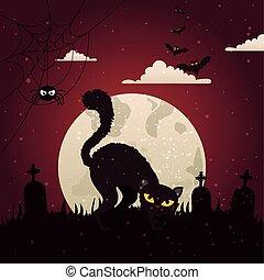 mörk, katt, kyrkogård, halloween natt
