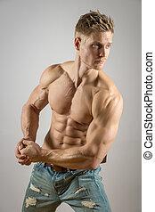 músculo abdominal, de, loura, atlético, homem