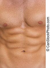 músculos abdominais, closeup