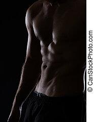 músculos, abdominal, muscular, closeup, macho preto, torso