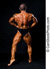 músculos, braços, costas,  bodybuilder, bronzeado, mostra