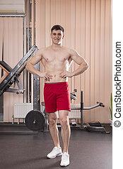 músculos, joven, barra con pesas, gym., doblar, hombre