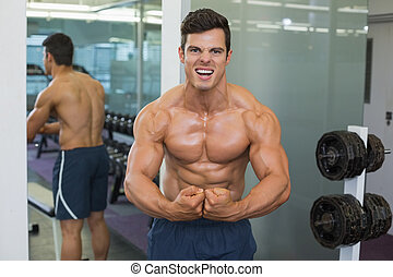 músculos, shirtless, muscular, flexionar, ginásio, homem