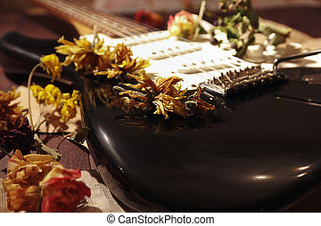 música, closeup., secado, vindima, folha, elétrico, flores, guitarra