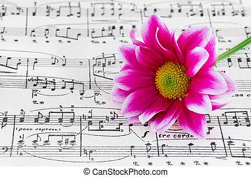 música, flor, folha