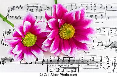 música, flores, folha