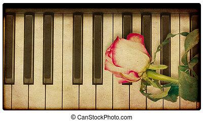 música, fundo, com, rosa
