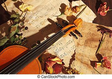 música, vindima, closeup., secado, violino, flores, raro, folha