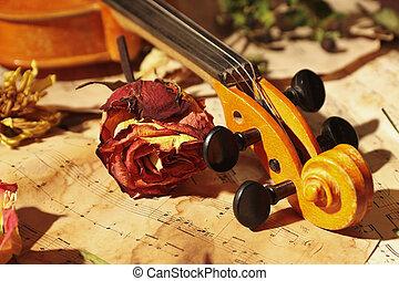 música, vindima, rosas, secado, violino, closeup, folha