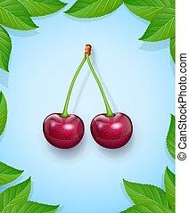 mûre, fruit., leaf., deux, juteux, cerises, vert, frais