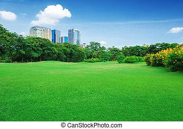 město, park, trávník