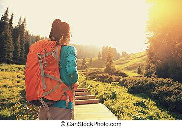 młoda kobieta, wycieczkowicz, hiking, na, ciągnąć, w, góra