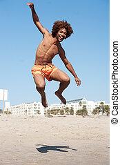młody, amerykanka, skokowy, afrykański samczyk, plaża