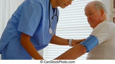 młody mężczyzna, doktor, kaukaski, prospekt, ciśnienie krwi,...