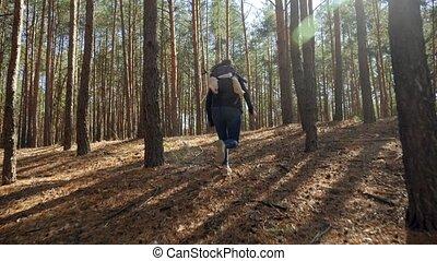młody, po, długość mierzona w stopach, pov, odbiegając, las...