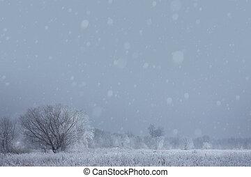 művészet, karácsony, tél, background;, havas, táj