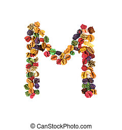 M, Dried flower alphabet isolated on white background