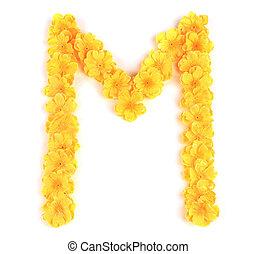 m, flor, alphabet., letra