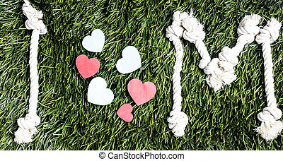 m, herbe, amour, vert, arrière-plan.