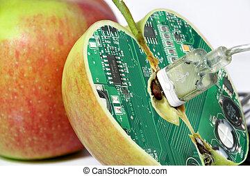 maçã, com, tecnologia, âmago