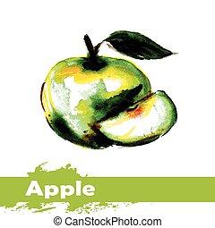 maçã, mão, aquarela, experiência., fruta, desenhado, branca, quadro