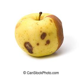 maçã maá, isolado, podre