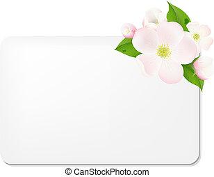 maçã, PRESENTE, etiquetas, árvore, em branco, flores