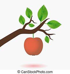 maçã vermelha, e, ramo, de, árvore, com, verde sai, eps10