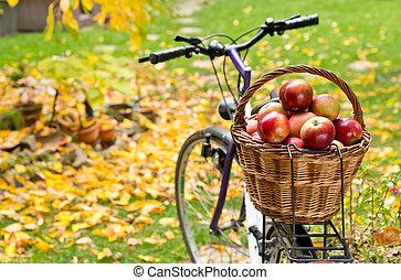 maçãs, em, cesta feito vime