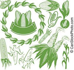 maíz, colección