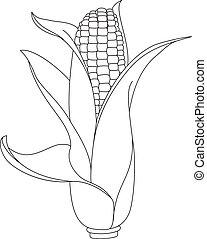 maíz, contorneado