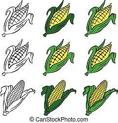 maíz, vector, conjunto