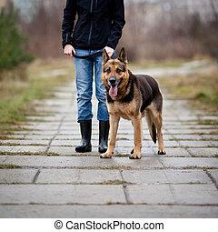 maître, obéissant, chien, elle