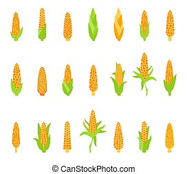 maïs, ensemble, vert, leaves.