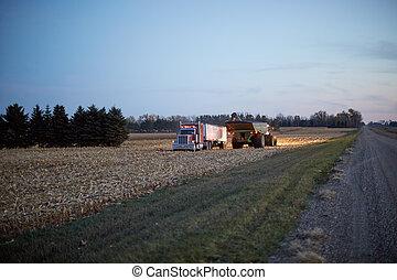 maïs, fonctionnement, agriculteurs, récolte, nuit, récolte