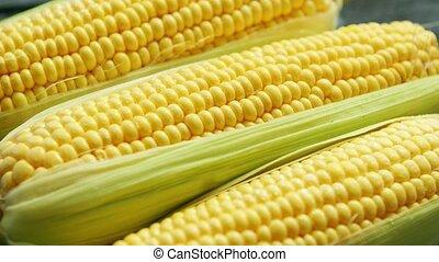 maïs, jaune, frais, feuilles