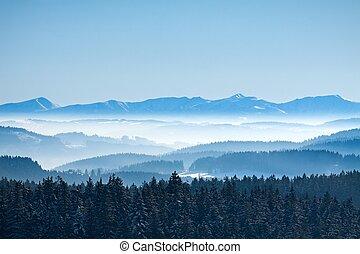 mañana, invierno, calma, paisaje de montaña