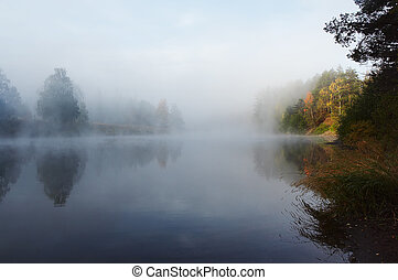 mañana, niebla