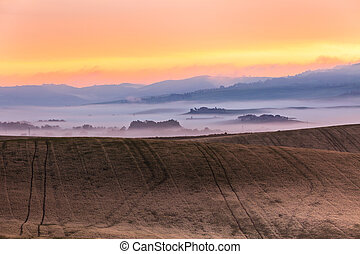 mañana, niebla, vista, en, tierras labrantío, en, toscana, italia