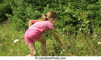 mała dziewczyna, jedzenie, truskawki, dziki, zrywanie